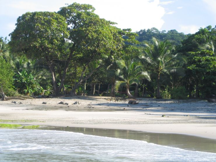 Santa Teresa Costa Rica  city pictures gallery : Santa Teresa, Costa Rica Guía de la Ciudad Go Visit Costa Rica