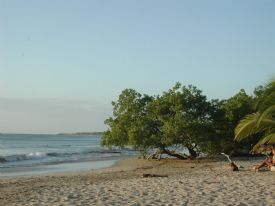 Playa Avellana - Playa Avellana, Guanacaste