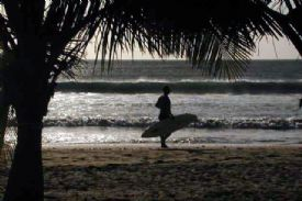 Surfista en Playa Avellana - Playa Avellana, Guanacaste