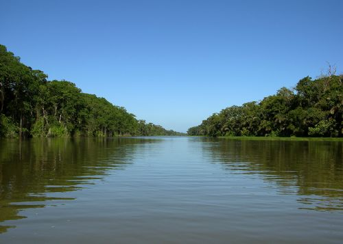 Calm canal in Tortuguero