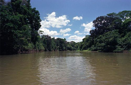 The beautiful Cano Negro River