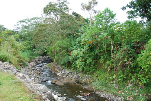 Little river in El Tanque, Alajuela