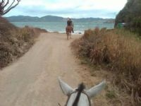 Horseback ride to the Beach at Recreo