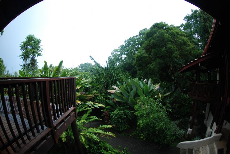 Edificio Principal en Playa Nicuesa Rainforest Lodge