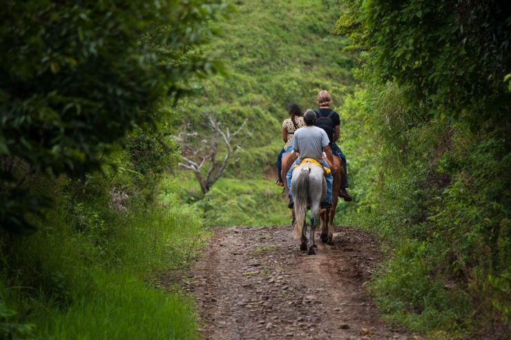 Los paseos a caballo son una excelente forma de realizar tours en Costa  Rica - Go Visit Costa Rica