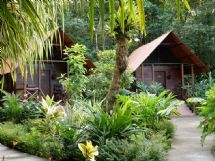 Evergreen Lodge Tortuguero