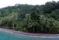 Playa Nicuesa Rainforest Lodge Beach